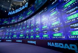Nasdaq options market trading halted