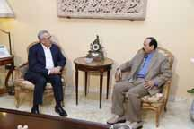 suleiman saudi envoy