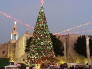 Christmas Tree Bethlehem